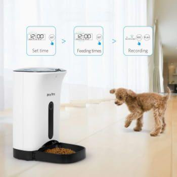 Alimentador automático para perros KatzeTatze