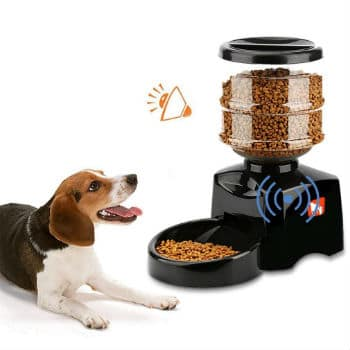Alimentador automático de perros y gatos Magicpeony